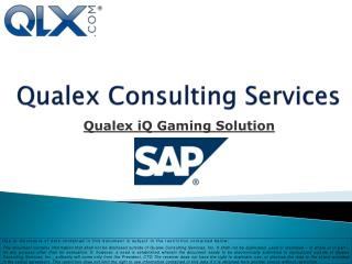 Qualex Consulting Services