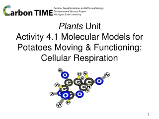 Chapters 8  9  Energy in a Cell Photosynthesis, Cellular Respiration
