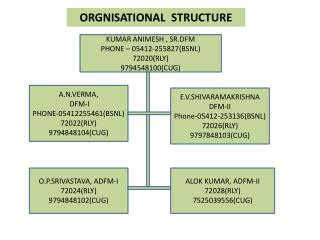 ORGNISATIONAL  STRUCTURE
