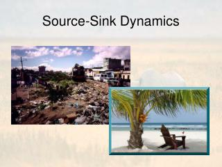 Source-Sink Dynamics