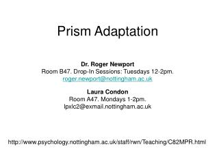 Prism Adaptation