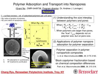Polymer Adsorption and Transport into Nanopores