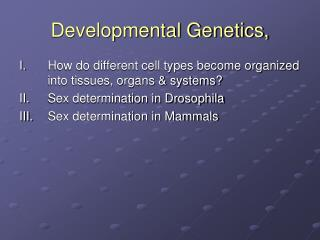 Developmental Genetics,