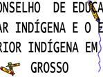 O CONSELHO  DE EDUCA  O ESCOLAR IND GENA E O ENSINO SUPERIOR IND GENA EM MATO GROSSO