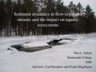 Sediment dynamics in flow-regulated streams and the impact on aquatic ecosystems