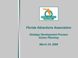 Florida Attractions Association Strategy Development Process Action Planning March 24, 2008