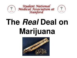 The  Real  Deal on Marijuana