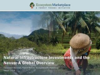 Natural Infrastructure Investments and the Nexus: A Global Overview