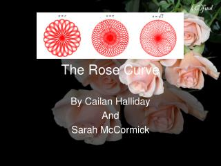 The Rose Curve