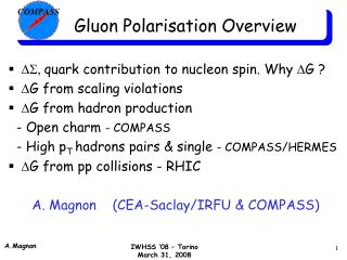 Gluon Polarisation Overview