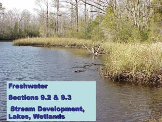 Freshwater  Sections 9.2 & 9.3  Stream Development, Lakes, Wetlands