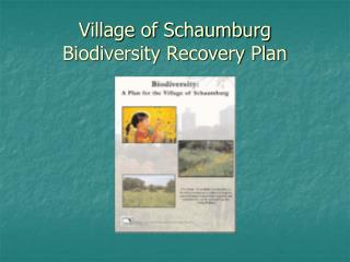 Village of Schaumburg  Biodiversity Recovery Plan