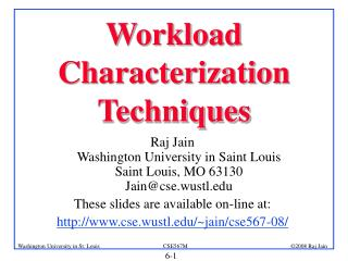 Workload Characterization Techniques
