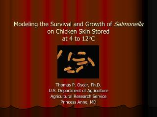 Modeling the Survival and Growth of  Salmonella  on Chicken Skin Stored  at 4 to 12 C