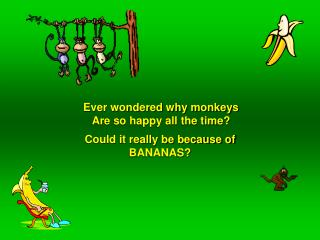 Ever wondered why monkeys Are so happy all the time?