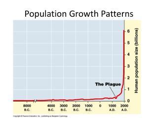 Population Growth Patterns