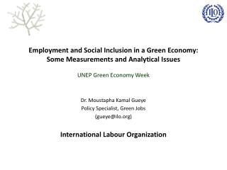 Employment and Social Inclusion in a Green Economy:  Some Measurements and Analytical Issues
