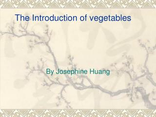 The Introduction of vegetables