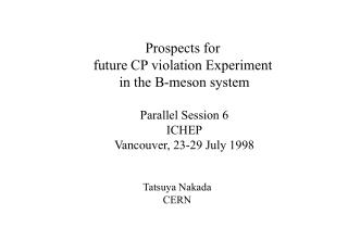 Prospects for  future CP violation Experiment  in the B-meson system Parallel Session 6 ICHEP