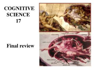 COGNITIVE   SCIENCE          17   Final review