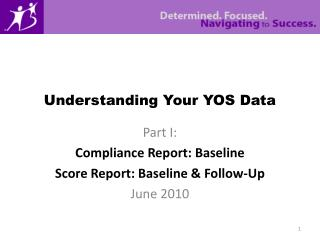 Understanding Your YOS Data