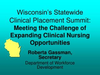 Wisconsin's Statewide Clinical Placement Summit:  Meeting the Challenge of Expanding Clinical Nursing Opportunities