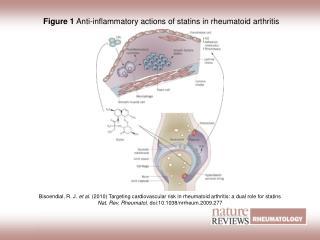 Figure 1  Anti-inflammatory actions of statins in rheumatoid arthritis