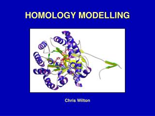 HOMOLOGY MODELLING