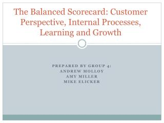 The Balanced Scorecard:  Customer Perspective, Internal Processes, Learning and Growth
