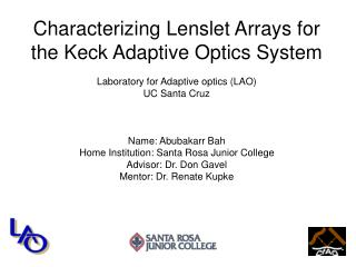 Characterizing Lenslet Arrays for  the Keck Adaptive Optics System