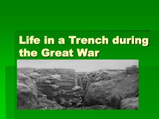 Life in a Trench during the Great War