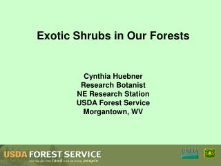 Exotic Shrubs in Our Forests    Cynthia Huebner Research Botanist NE Research Station USDA Forest Service Morgantown, WV