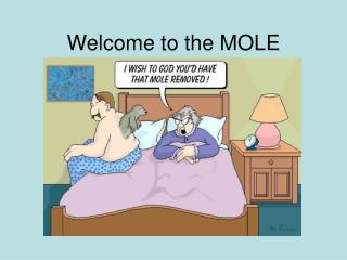 Welcome to the MOLE