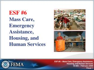 ESF #6