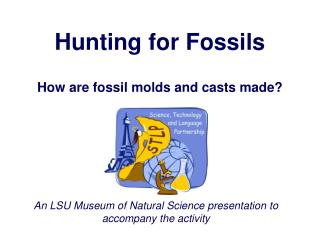 Hunting for Fossils
