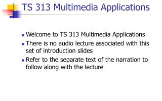 TS 313 Multimedia Applications