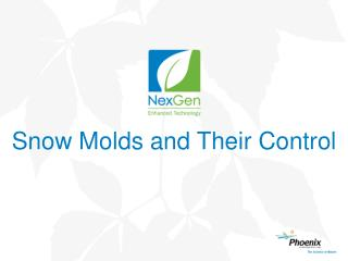Snow Molds and Their Control