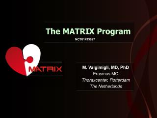 The MATRIX Program