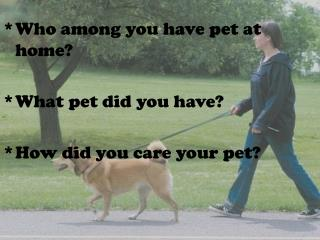 Who among you have pet at home? What pet did you have? How did you care your pet?