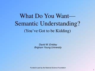 What Do You Want —Semantic Understanding?
