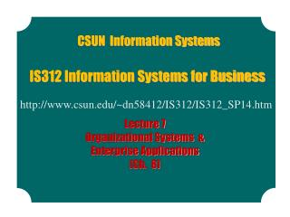IS312 Information Systems for Business