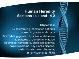 Human Heredity Sections 14-1 and 14-2