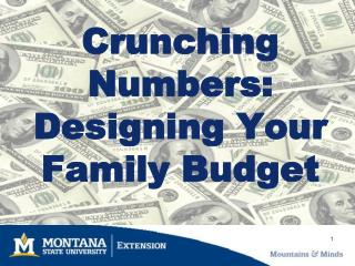 Crunching Numbers:  Designing Your Family Budget