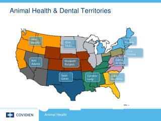 Animal Health & Dental Territories