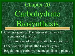 Chapter 20   Carbohydrate Biosynthesis