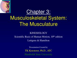 Chapter 3: Musculoskeletal System: The Musculature