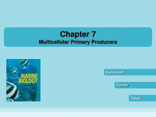 Chapter 7 Multicellular Primary Producers