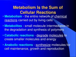 Metabolism Is the Sum of Cellular Reactions