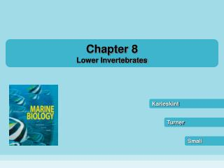 Chapter 8 Lower Invertebrates