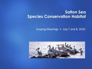 Salton Sea  Species Conservation Habitat
